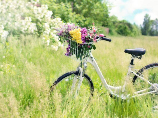 velo-fleurs