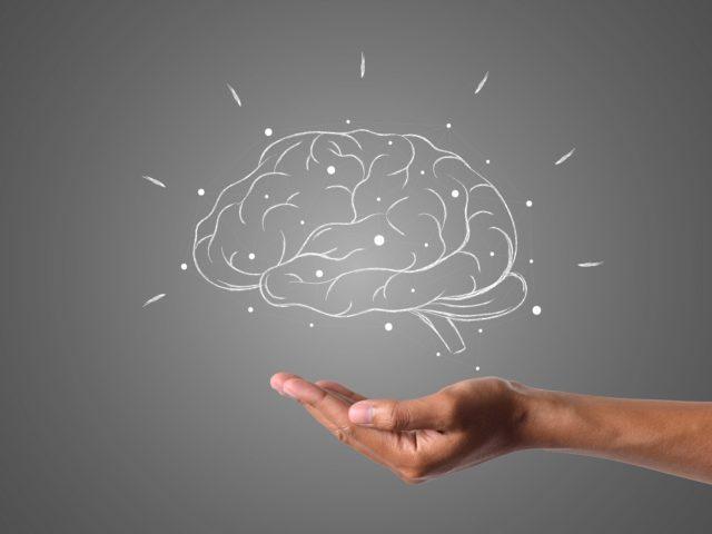 biais-cognitifs-cerveau