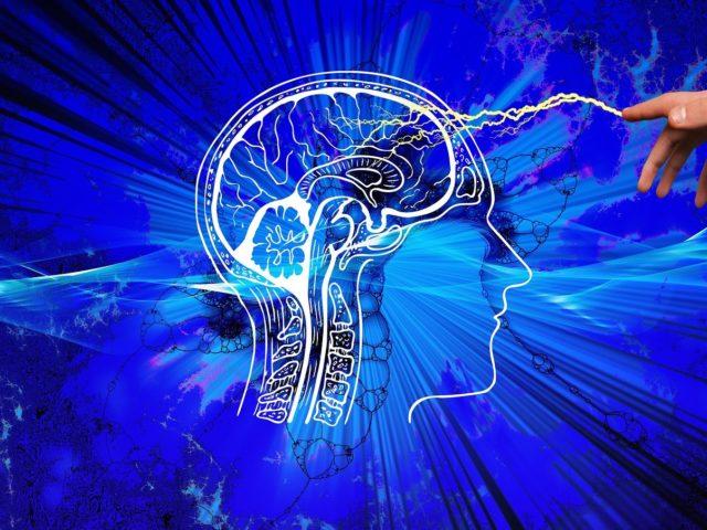 biais cognitifs du cerveau