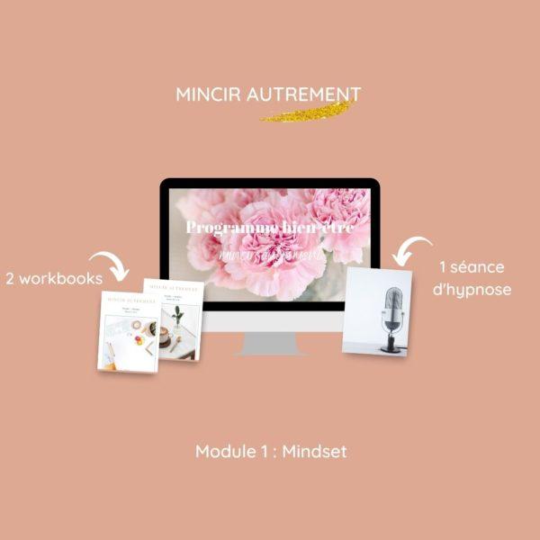 module 1 mindset